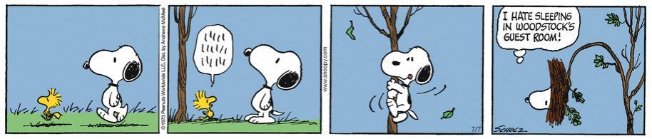 Peanuts. - Page 18 Capt1965