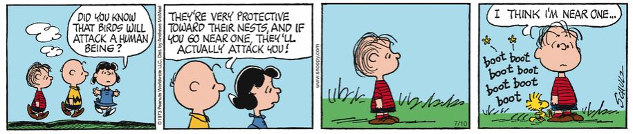 Peanuts. - Page 18 Capt1976