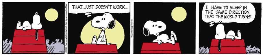 Peanuts. - Page 18 Capt1993