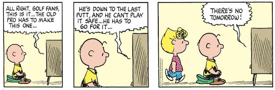 Peanuts. - Page 18 Capt1995