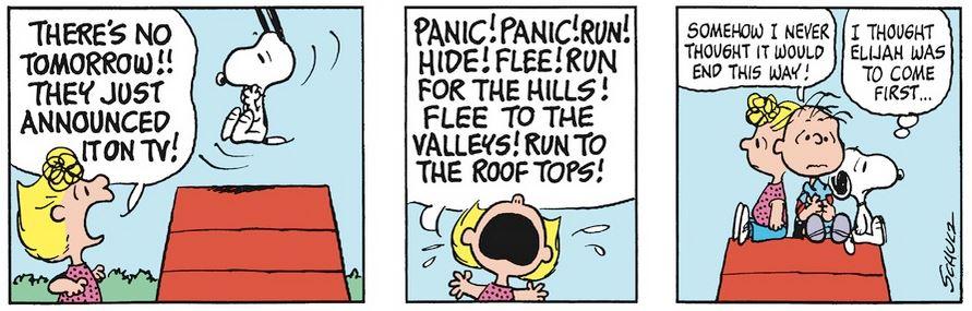 Peanuts. - Page 18 Capt1997