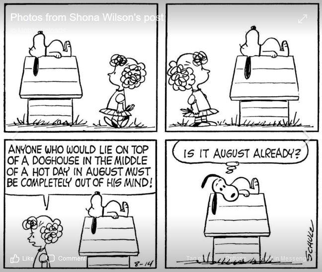 Peanuts. - Page 18 Capt2048