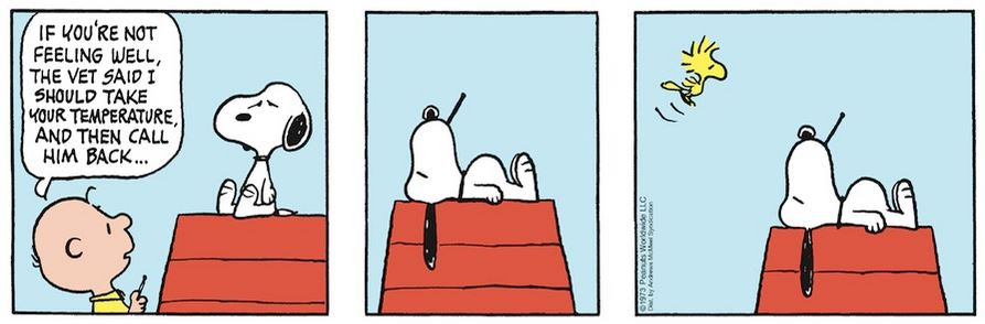 Peanuts. - Page 18 Capt2051
