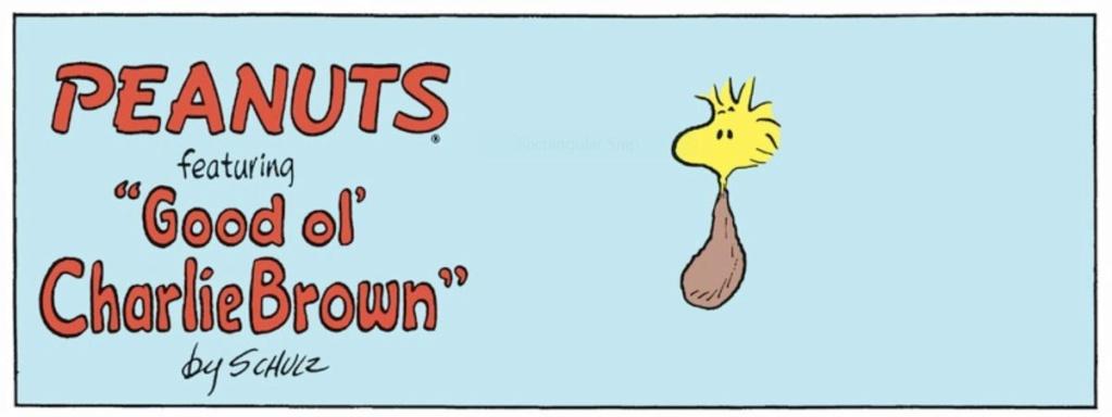 Peanuts. - Page 23 Capt2154