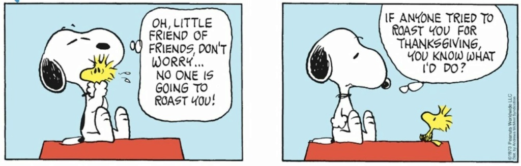 Peanuts. - Page 23 Capt2156