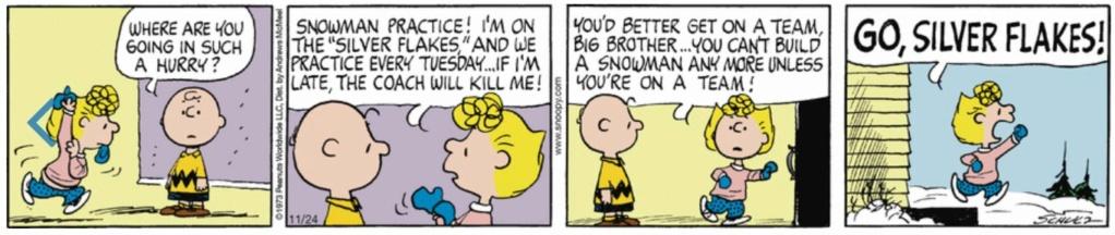 Peanuts. - Page 23 Capt2162