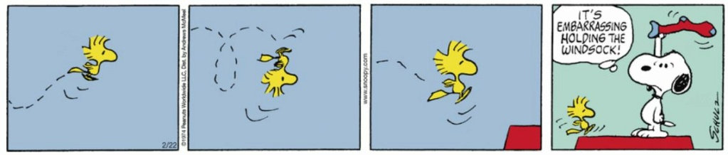 Peanuts. - Page 27 Capt2525