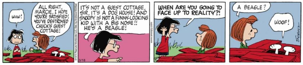 Peanuts. - Page 28 Capt2627