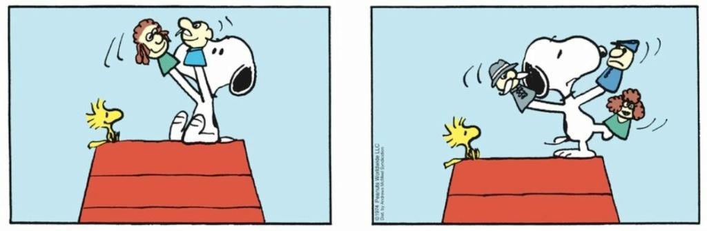 Peanuts. - Page 28 Capt2639