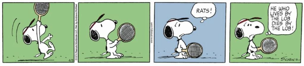 Peanuts. - Page 28 Capt2691