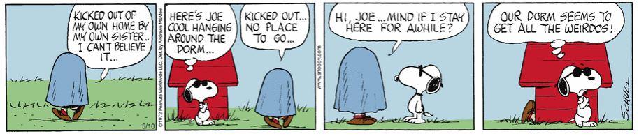 Peanuts. - Page 41 Captu119