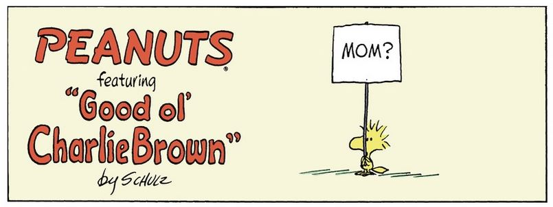 Peanuts. - Page 41 Captu127