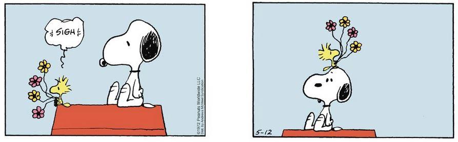 Peanuts. - Page 41 Captu129