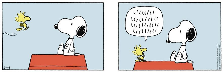 Peanuts. - Page 2 Captu227