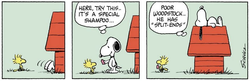 Peanuts. - Page 2 Captu229