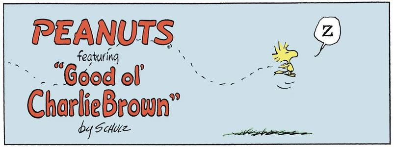 Peanuts. - Page 3 Captu287