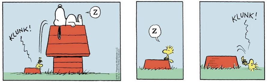 Peanuts. - Page 3 Captu289