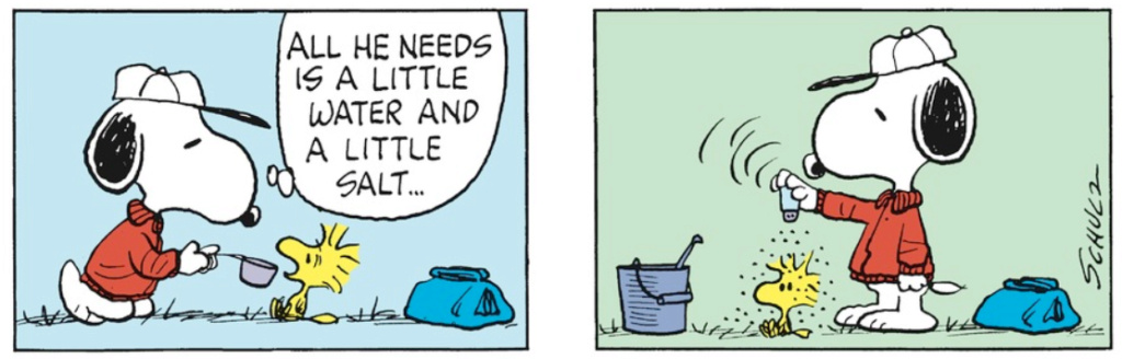 Peanuts. - Page 23 Captu331