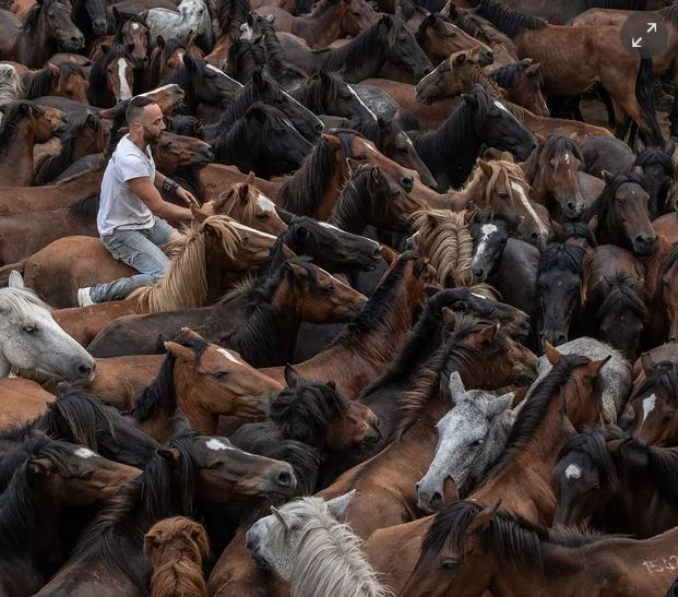 Guardian photos of the day. - Page 8 Captu361