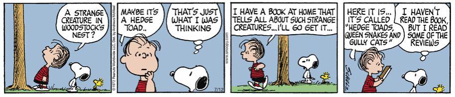 Peanuts. - Page 3 Captu380