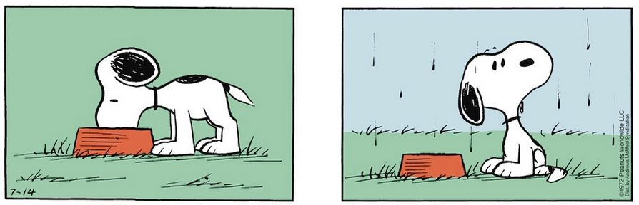 Peanuts. - Page 3 Captu388