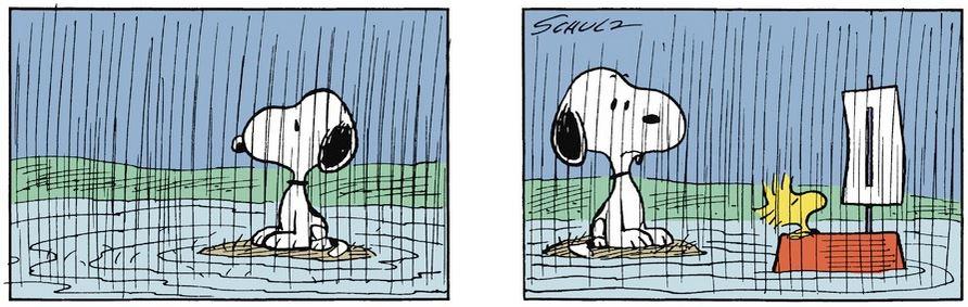 Peanuts. - Page 3 Captu390