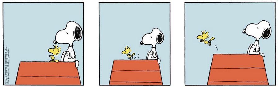 Peanuts. - Page 4 Captu477