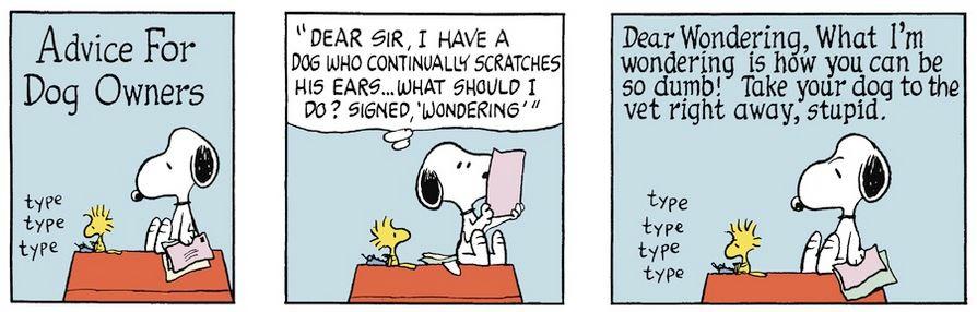 Peanuts. - Page 6 Captu705