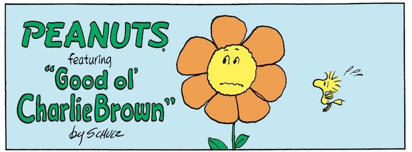 Peanuts. - Page 8 Captu995