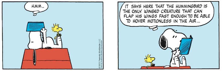 Peanuts. - Page 8 Captu996