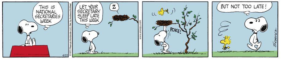 Peanuts. - Page 40 Captur35