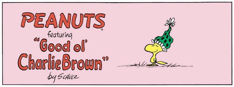 Peanuts. Captur63