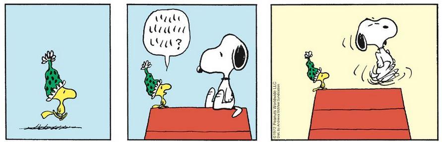 Peanuts. Captur64