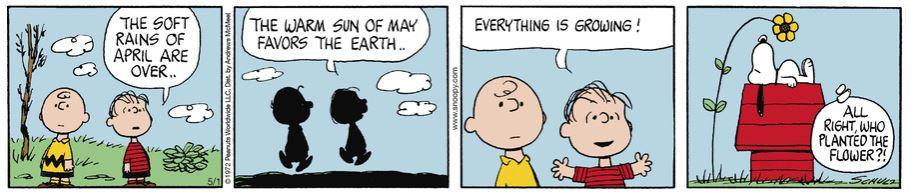 Peanuts. Captur79