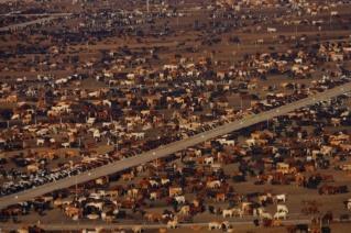 La consommation massive de viande et ses répercutions sur notre environnement Photo_17
