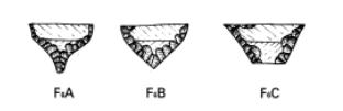 Evolución de las puntas de flecha líticas Captur21