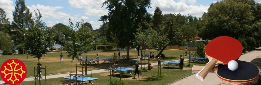 Trouvez des joueurs de tennis de table à Toulouse et autour
