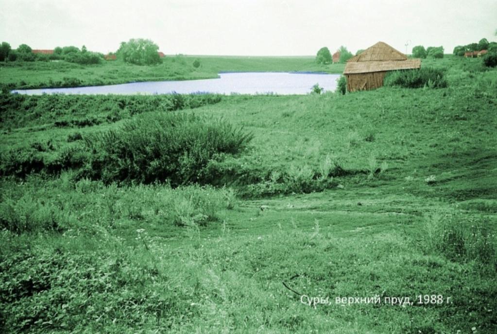 Хилково. Суры. 20191215