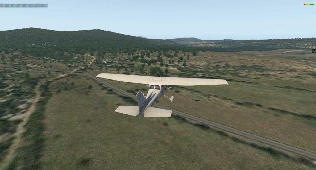 Global Forest Cessna19