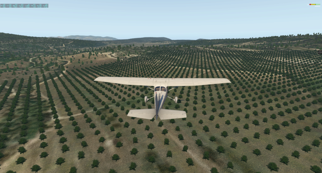Global Forest Cessna21