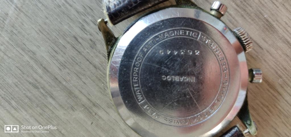 Eterna -  [Postez ICI les demandes d'IDENTIFICATION et RENSEIGNEMENTS de vos montres] - Page 23 Img_2010
