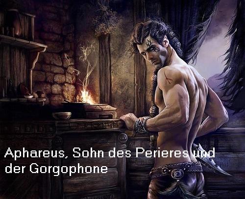 Aphareus (Mythologie): Sohn der Gorgophone und des Piereres Aphare10