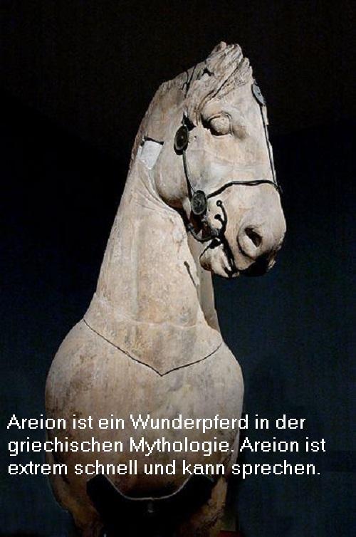 Areion (Mythologie, auch Arion): Ist das Wunderpferd Areion ein Gott? Areion10