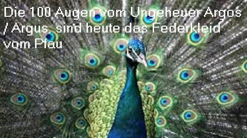 Argus (auch Argos): Riesiges Ungeheuer mit hundert Augen Argus10