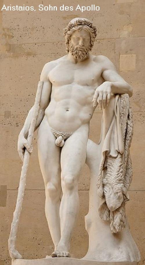 Aristaios (Mythologie): Gott der Imkerei, Schafzucht, Jagd und vom Olivenanbau Arista10