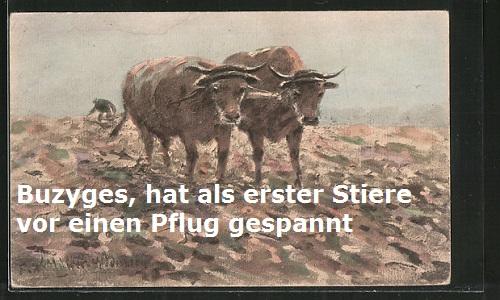 Buzyges (Mythologie): Hat als erster Mensch Stiere vor einen Pflug gespannt Buzyge10