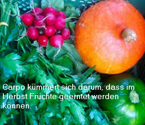 Carpo (auch Karpo, Mythologie): Carpo ist eine Hore der 1. Generation und kümmert sich darum, dass im Herbst Früchte geerntet werden können Carpo10