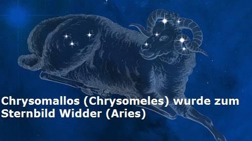 Chrysomallos (Chrysomeles, Mythologie): Goldenes Vlies und Sternbild Widder Chryso10
