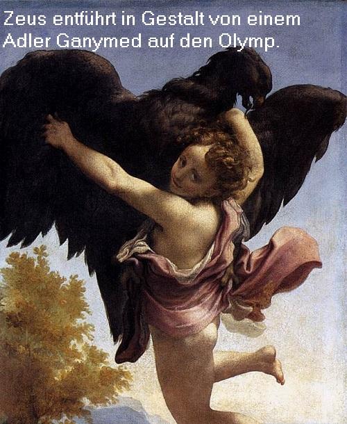Ganymed (Ganymedes) in der Mythologie löste Hebe als Mundschenk ab und gilt als Geliebter des Zeus Ganyme11
