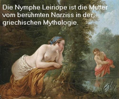 Leiriope (auch Liriope, Mythologie): Nymphe und Mutter des Narziss Leirio10